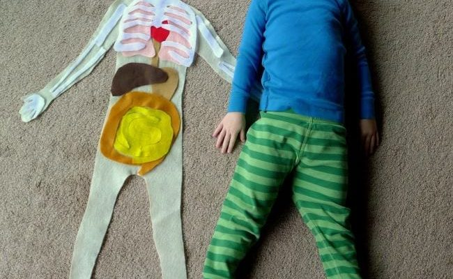 Anatomy Activities Fun At Home With Kids.jpg